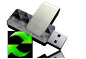 Windows Undelete Professional 169x116_pd.png