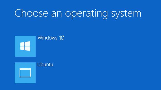 Dual boot Windows 10 & Ubuntu UEFI A12nL.png