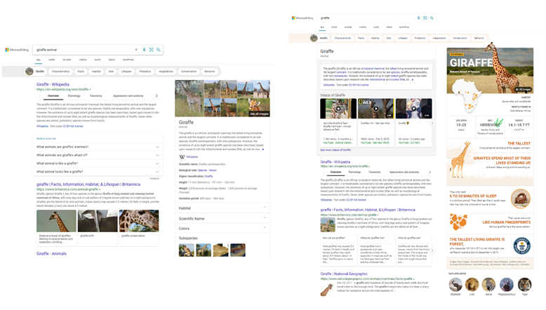Microsoft Bing now delivers more visually immersive experiences giraffe-new-and-old-answer.png.png