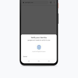 Biometric authentication for chrome autofill mFunxUTUMxe.png