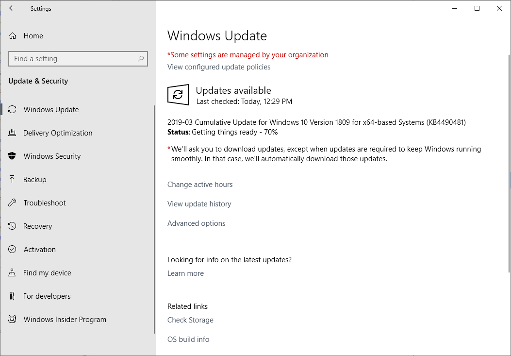 Windows 10 1809 KB4490481: the missing patch arrives, finally microsoft-windows-10-kb4490481.png